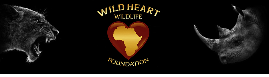 Wild Heart Wildlife Foundation